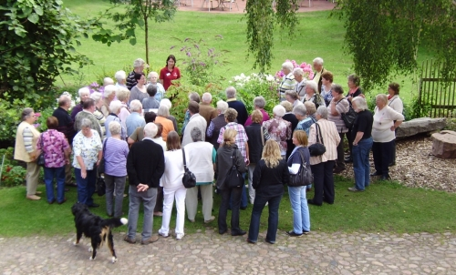Ein beliebtes Ausflugsziel für Gruppen - FloraFarm Ginseng mit kostenlosen Führungen