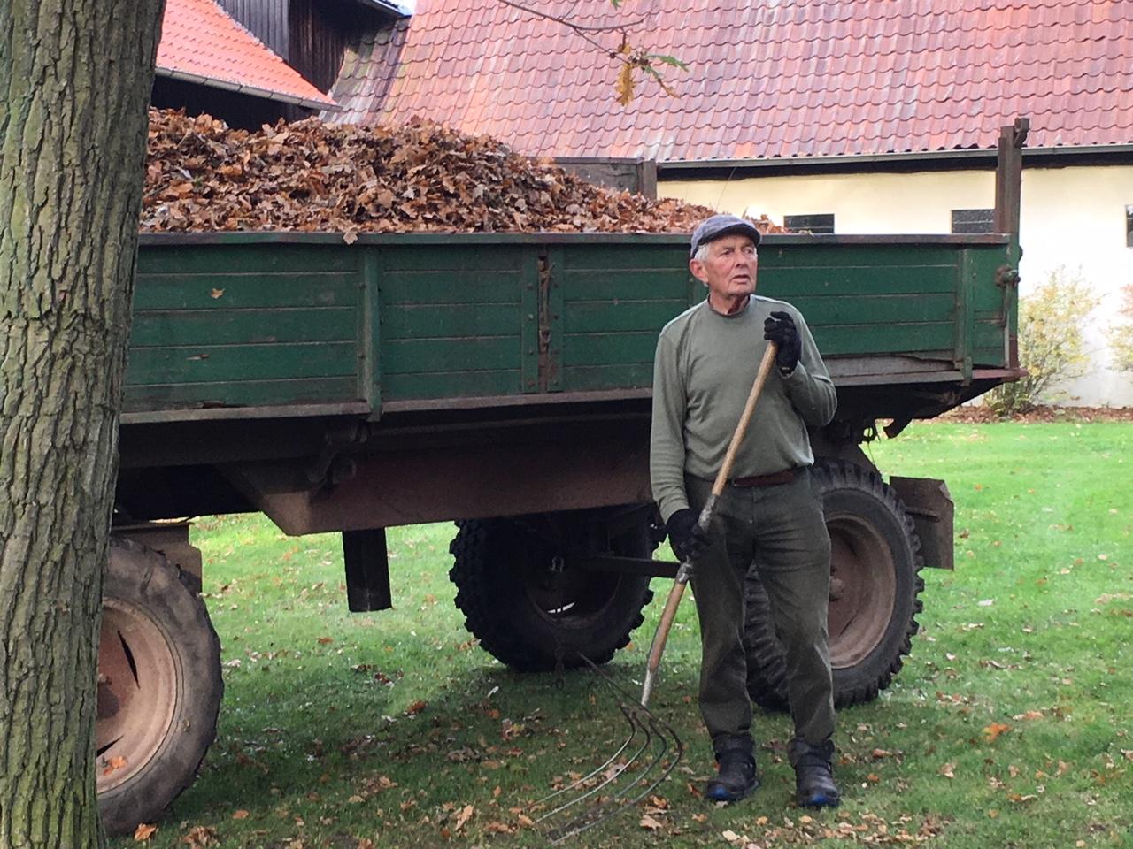 Herbstliche Arbeit auf der FloraFarm - Laub und mal nicht Ginseng
